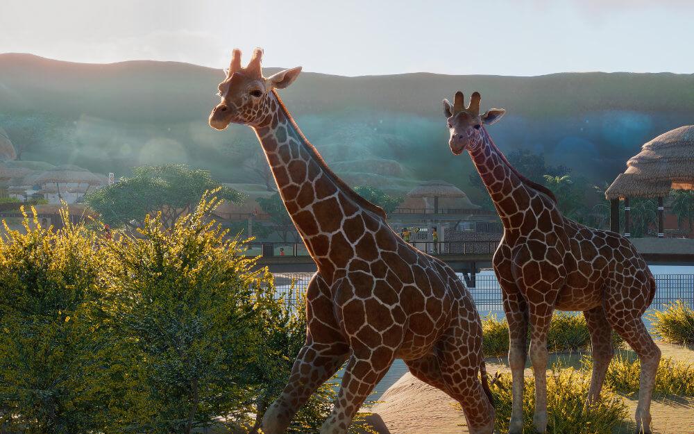 Planet Zoo - Diese Aufbauspiele solltest du kennen